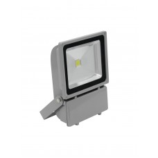 EUROLITE LED IP FL-100 COB 3000K 120